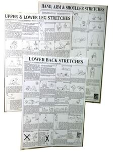 "Picture of Stretching Wall Charts, 17"" x 22"" laminated"